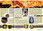 Inklings Brochure