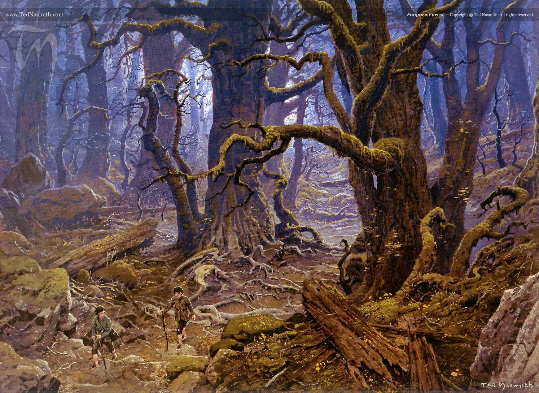 Fangorn TN-Fangorn_Forest