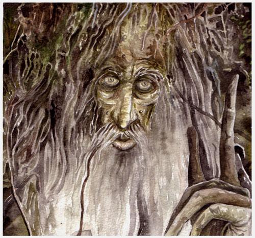 Les Arshees, Peuple des arbres Treebeard_ent